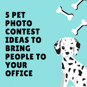 5 Pet Photo Contest Ideas to Bring People to Your Office