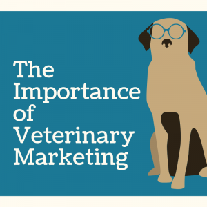 The Importance of Veterinary Marketing