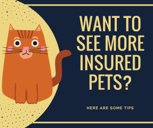 Want to see more insured pets_