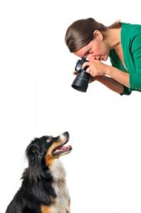 camera_dog