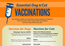 Essential Dog & Cat Vaccinations
