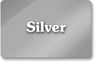 Silver Veterinary SEO Package