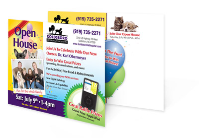 vet direct mail marketing
