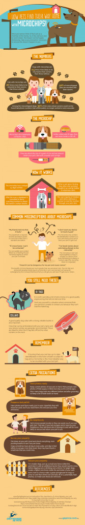 How-pets-find-their-way-home--with-microchips-Infographic