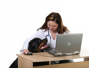 Keep up with veterinary trends by effectively marketing your practice.