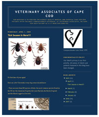 Veterinary Associates of Cape Cod