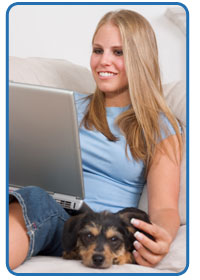 Attract Veterinary clients to your website