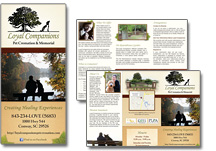 vet marketing brochure