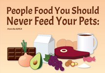 People Food