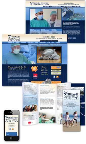 veterinary marketing